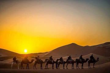 1 night Camel Trek Bivouac From Merzouga