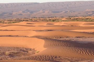 1 Night Excursion in Morocco Desert - Erg Chegaga