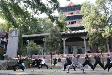 10-Day Shaolin Temple Experience from Beijing