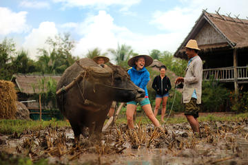 11-Day Thailand and Laos Adventure Tour from Bangkok