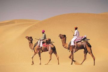 14-Nights Tour of Royal Rajasthan