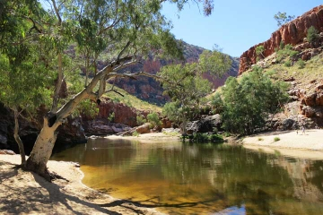 2-Day MacDonnell Ranges Hiking and Camping Tour from Alice Springs