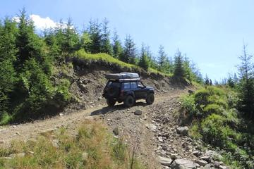 2-Day Private Tour of the Carpathian Mountains from Bucharest