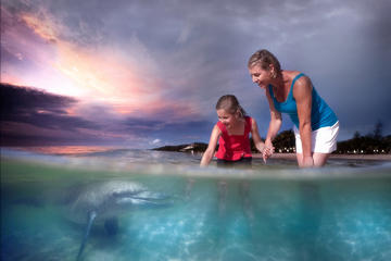 2 Day Tangalooma Resort and Dolphin Feeding Tour