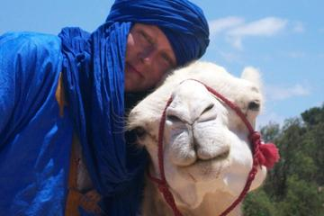 2 hour camel ride on the beach of Essaouria