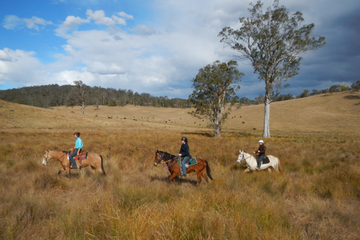2-Hour Horse Ride in Howes Valley