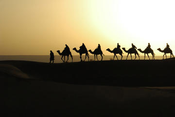 2-Night Private Tour to Merzouga Dunes from Marrakech including Camel Trek and Desert Camp