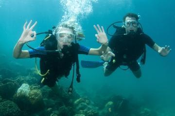 2-Tank Dive Trip from Nassau