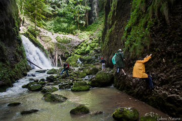 3-Day Apuseni Natural Park Private Tour from Timisoara