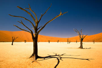 3-Day Namibia Desert Tour from Windhoek