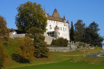 3-Day Switzerland Tour from Zurich to Geneva: Lucerne, Interlaken, Bern and Gruyères