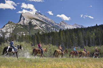 3 Hour Banff Horseback Riding Adventures