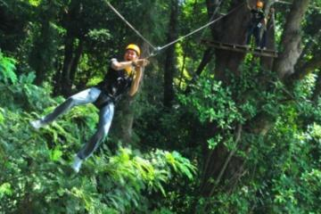 3-Hour Zip Line Jungle Adventure from Phuket