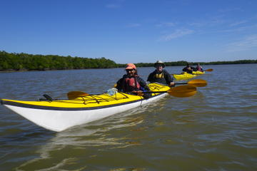 3- or 4-Day Everglades Kayaking and Camping Tour