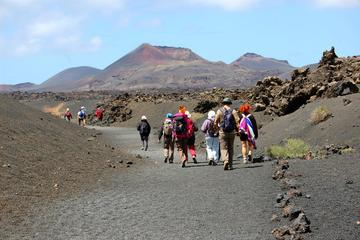 3-Volcanoes Guided Walking Tour from Lanzarote