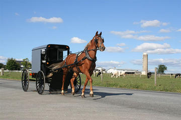 4-Day Amish Experience from New Hampshire
