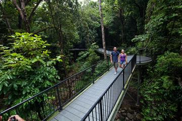 4-Day Cairns and the Great Barrier Reef Including Green Island and the Daintree Rainforest