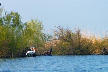 4-Day Danube Delta Tour: Stay At the Fisherman's house