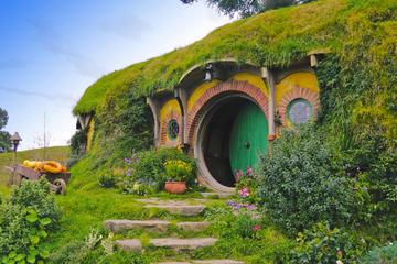 4-Day Hobbiton and Rotorua Tour
