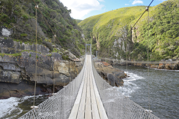 4-Day Private Garden Route Tour from Cape Town
