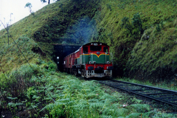 4-Day Rail Tour: Sri Lanka Countryside