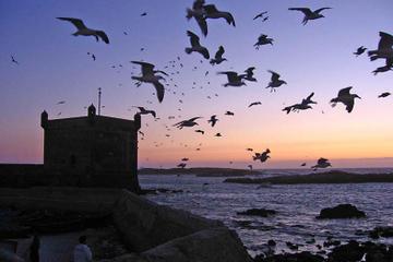 4-Days Essaouira City Break