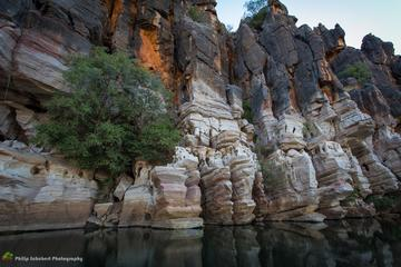 7-Day Darwin to Broome Tour Including Litchfield National Park Nitmiluk National Park and the Bungle Bungle