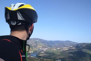 7-Day Douro Wine Bike Tour from Porto moderate