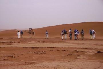 8-Day Camel Trekking Tour in the Moroccan Sahara Desert from Marrakech