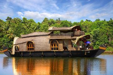 8-Day Kerala and Goa Tour: Backwaters and Beaches from Kochi to Goa by Air