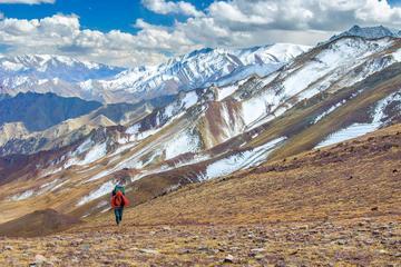 8-Day Trek to Heaven in Himalayas