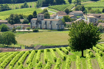 A day visiting traditional distilleries in the Heart of the vineyards of Cognac