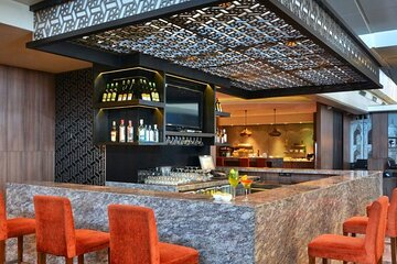 Delhi Indira Gandhi International Airport Plaza Premium Lounge (Departure)