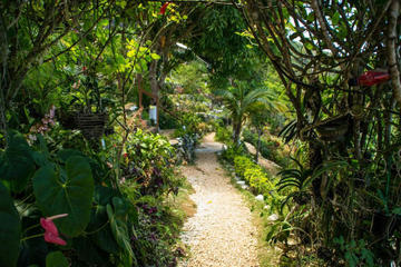 Ahhh Ras Natango Gallery and Garden Tour from Montego Bay