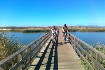 Albufeira Coast and Countryside Mountain Bike Tour