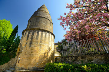 All Dordogne visit in a day