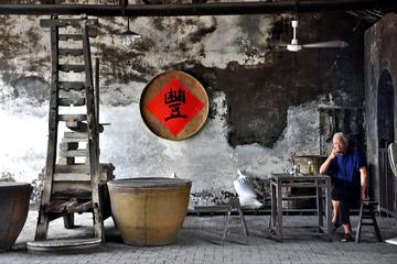 Ancient China Wuzhen Water Town Day Tour from Hangzhou
