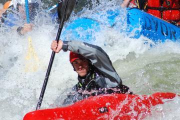 Arkansas River The Numbers Half-Day Rafting Trip