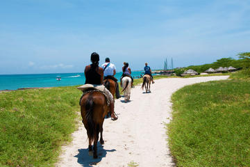Aruba Horseback Riding and Snorkeling Tour