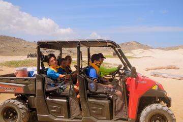 Aruba Shore Excursion: UTV Adventure