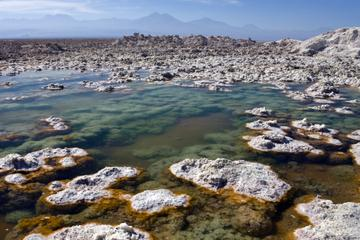 Atacama Salt Flat and Toconao Tour from San Pedro