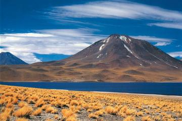 Atacama Salt Flats, Toconao and Altiplanic Lagoons Day Trip