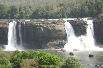 Athirappilly Falls Day Tour from Kochi