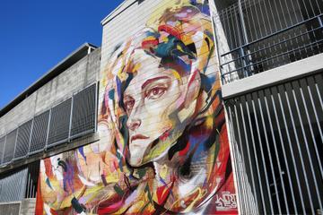 Auckland Street Art Walking Tour
