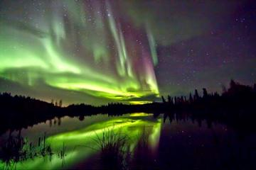 Aurora Hunting Tours