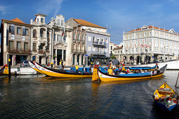 Aveiro and Ílhavo Tour from Porto