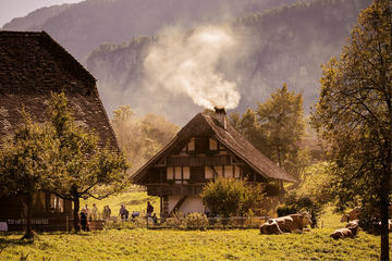 Ballenberg Swiss Open-Air Museum: Individual Tour Through Rural Life of Bygone Times