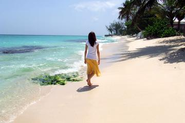 Barbados Island Sightseeing Tour