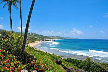 Barbados Private Customizable Island Tour