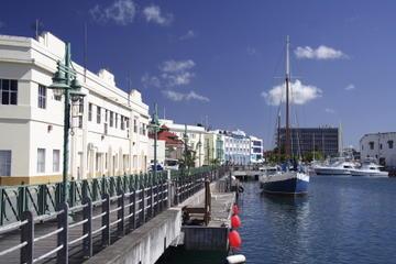 Barbados Shore Excursion: Bridgetown Walking Tour